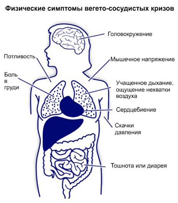 Неврологические диагнозы, которые должны лечить психотерапевты